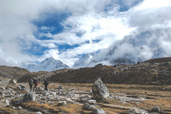 Hikers trekking in Lobuche towards Everest Base Camp Royalty Free Stock Photo