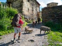 Hikers trekking in Svaneti Stock Photography