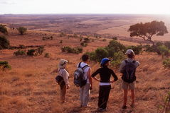 Hikers viewing the Serengeti Plain, Tanzania. (above Klein's Camp Royalty Free Stock Images