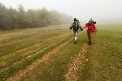 Hikers walk on a foggy forest trail. In the hills of a plato Royalty Free Stock Photo