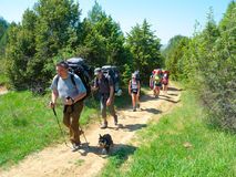 Hikers walk on a path Royalty Free Stock Photography