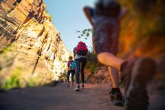 Hikers walk on the trail. In the Zion National Park, USA stock photos