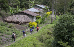 Hikers walking through Baliem Valley. Baliem Valley, West Papua, Indonesia, February 12th, 2016: hikers on the road royalty free stock images