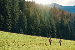 Hikers walking in a field near forest Stock Photography