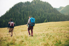 Hikers walking in a field towards forested hills Stock Photography