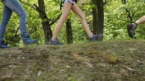 Hikers walking on forest edge - closeup on legs of teenagers and woman stock footage