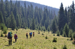 Hikers walking in mountains. Hikers group walking in mountains Stock Images
