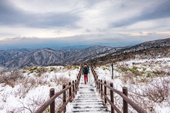 Hikers in winter mountains,Winter landscape white snow of Mounta Royalty Free Stock Images