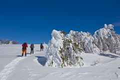 Hikers in a winter plain Royalty Free Stock Images