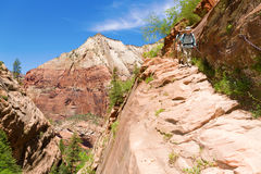 Hikers in Zion. Hikers descending a steep trail in Zion national park Stock Images