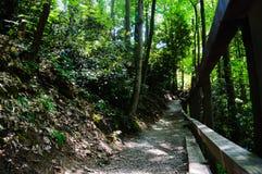 hikes Fotografia de Stock
