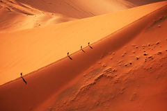Hiking on a Sand Dune in Sossusvlei. Hikers walking uphill on the crest of a sand dune, Picture was taken in Sossusvlei National Park, Namibia stock image