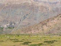 Hikin till Vulkanen San Jose Arkivfoton