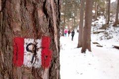 hiking вал тропки знака столба Стоковые Фотографии RF