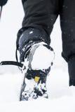hiking волшебная древесина зимы краткости остальных Стоковое Изображение RF
