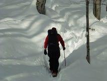 hiking волшебная древесина зимы краткости остальных стоковые фотографии rf