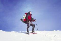 hiking волшебная древесина зимы краткости остальных Стоковое Фото
