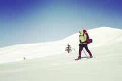 hiking волшебная древесина зимы краткости остальных Стоковая Фотография