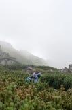 Hiking в прикарпатских горах Стоковое Изображение