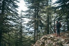 hiking горы Девушка стоит на фоне высоких гор отдыхать девушки Стоковое Изображение