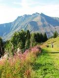 hiking горы Стоковые Фото