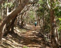 hiking древесины женщин kauai стоковые фото