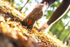 Hiking деталь Стоковые Фотографии RF