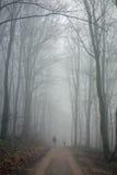 hiking пар стоковое фото