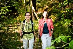 hiking природа одичалая Стоковые Изображения RF