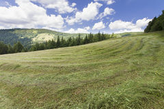 hiking путь Стоковая Фотография RF