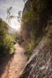 hiking трасса Стоковое Фото