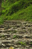 hiking тропка гор Путь среди утесов в туризме леса бука Стоковая Фотография