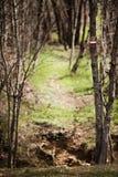 hiking тропка знака стоковая фотография