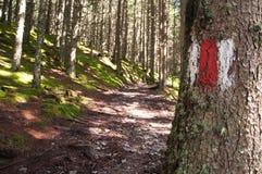 hiking тропка знака Стоковые Фотографии RF