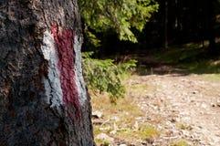 hiking тропка знака Стоковые Изображения RF