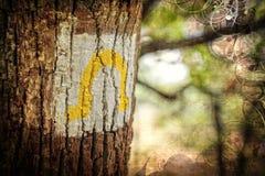 hiking тропка отметки Стоковые Изображения RF