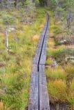 hiking тропка Стоковые Изображения RF