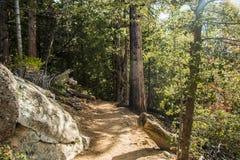 hiking тропки Стоковое фото RF