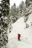 hiking человек стоковое изображение rf