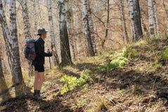Hiking. Activity men in mountain autumn Royalty Free Stock Photos