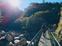 hiking стоковые изображения
