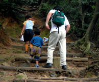 Hiking. A man and two children hiking in a forest Stock Photo