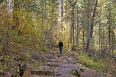 Hiking западная вилка в падении Стоковые Изображения RF