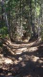 hiking Стоковые Изображения RF