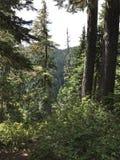 hiking Стоковая Фотография RF