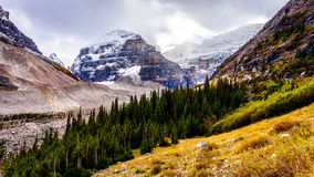 Hiking above the tree line to the Plain of Six Glaciers at Lake Louise Stock Photography