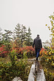 Hiking Acadia National Park in Fall. Man hiking on Great Head Trail  on foggy rainy autumn day in Acadia National park on Bar Harbor, Maine. On Mount Desert Royalty Free Stock Photos