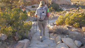 Active Woman Coming Down The Hill Along The Trail In The Mojave Desert Back View. Hiking active women in outdoor clothing with a backpack and trekking poles, she stock video