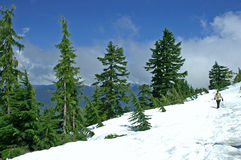 Hiking Alone. Man hiking down Mount Pilchuck alone Royalty Free Stock Photography