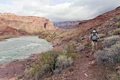 Hiking Along the Colorado River. A backpacker walks along the Colorado River on a trail deep in the Grand Canyon National Park Stock Photo